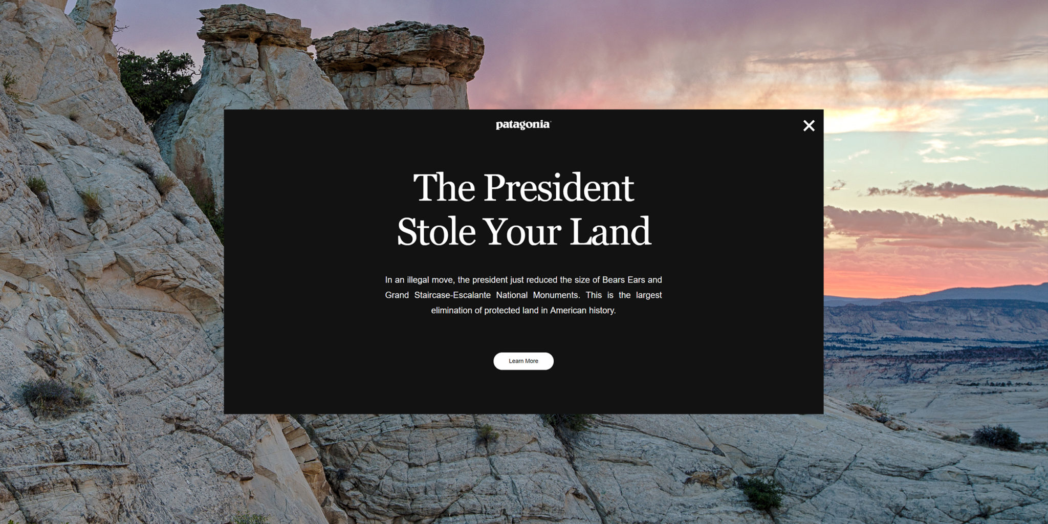 Screenshot: The President Stole Your Land - Patagonia Campaign