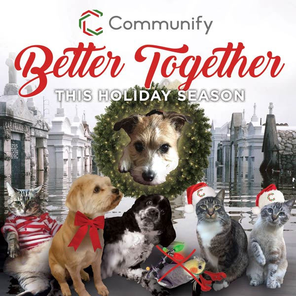 Communify Holiday Card Round 2