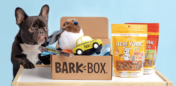 Bark Box Promo Photoshoot